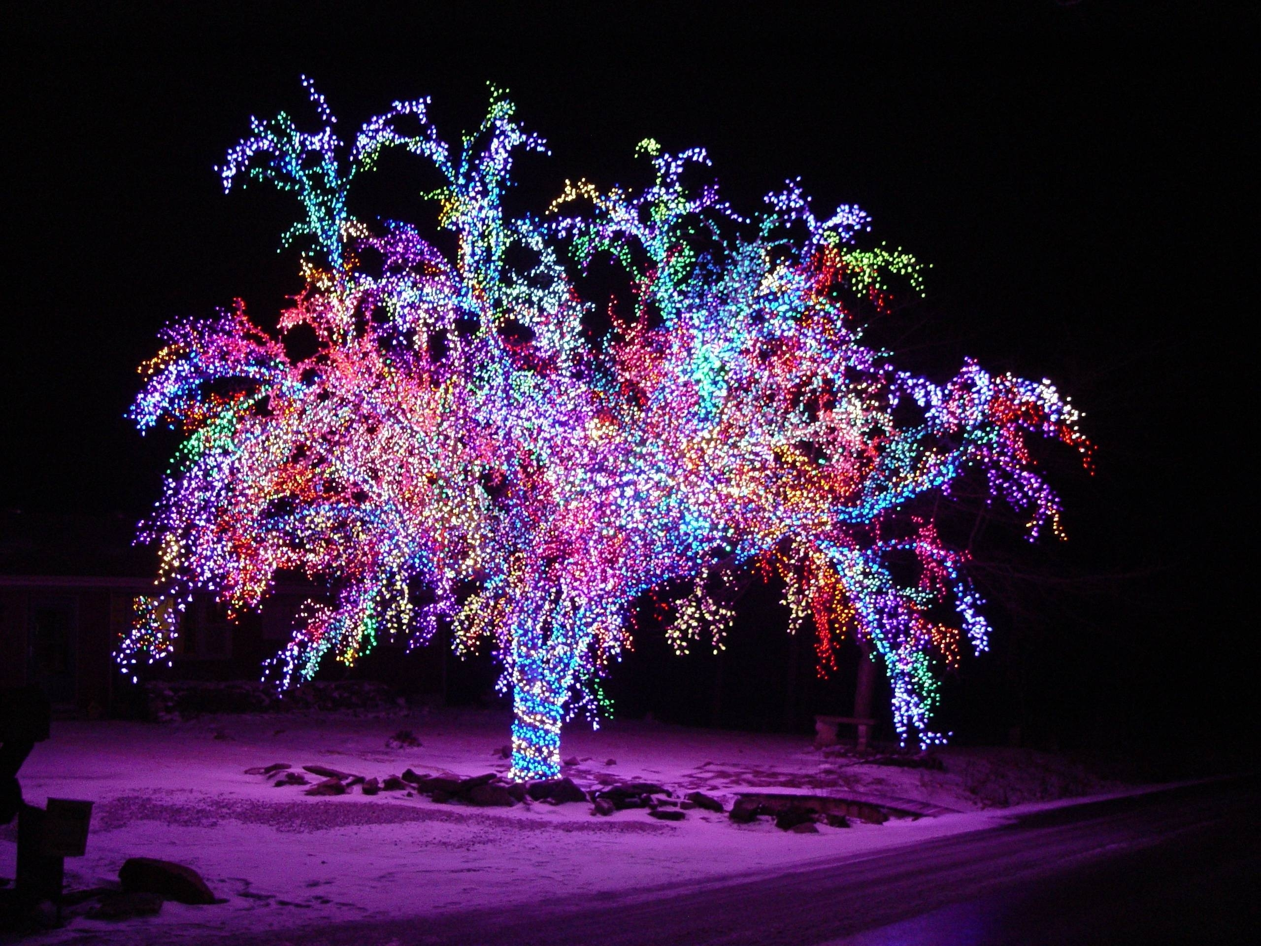 Inspiration about Images About Christmas Light Decoration Ideas On Pinterest Lights For Hanging Lights On Large Outdoor Tree (#15 of 15)
