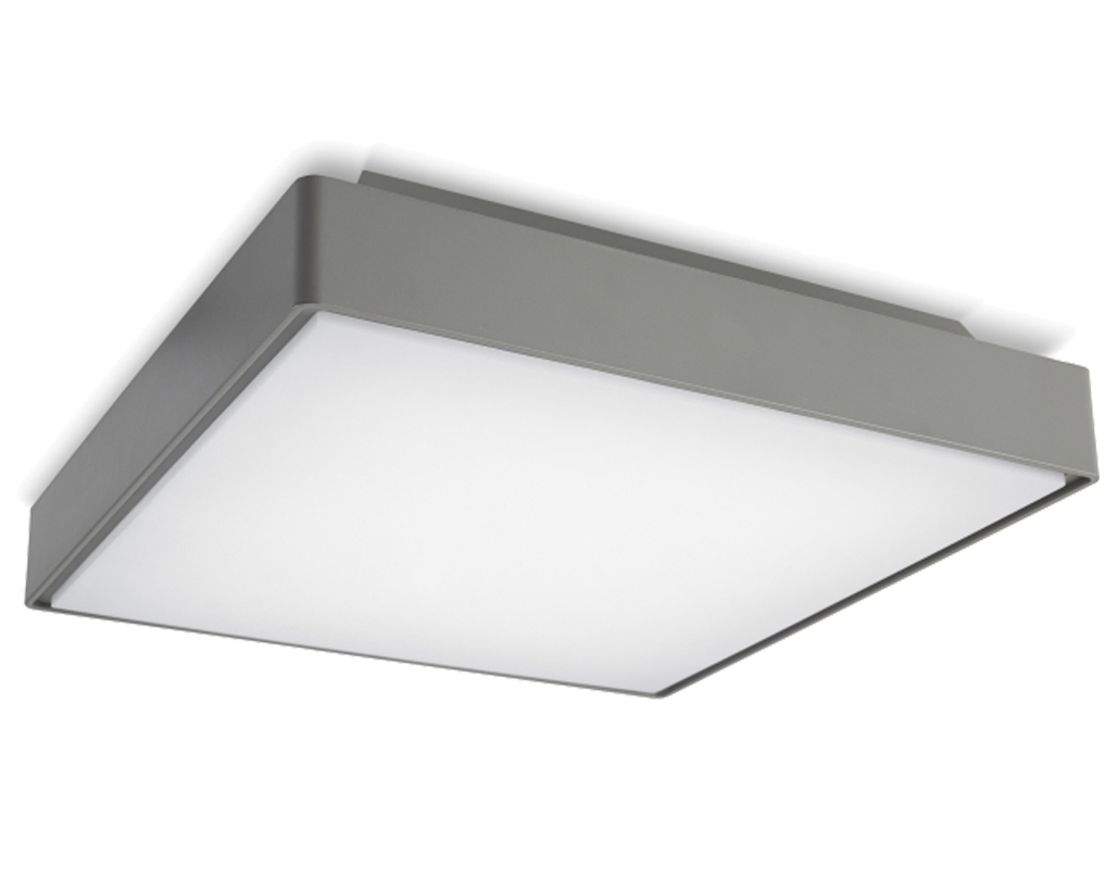 Led Outdoor Ceiling Light With 17W 12 In Round Fixture 4000K For Outdoor Ceiling Lights At Bunnings (#10 of 15)