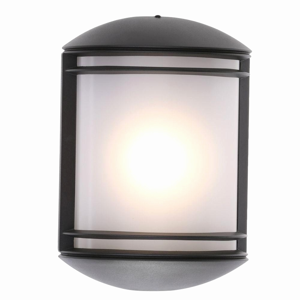 Led Outdoor Wall Light Raccoon W Motion Detector | Modern Home Interior For Led Outdoor Raccoon Wall Lights With Motion Detector (View 10 of 15)