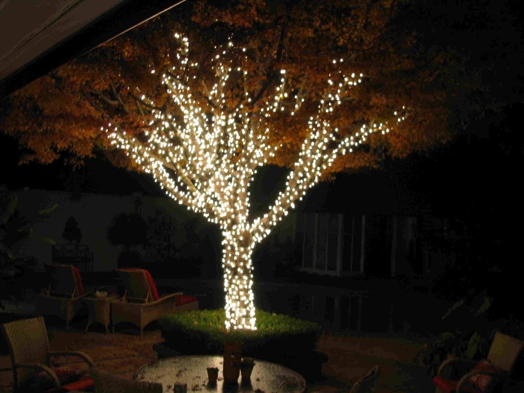15 Best Of Hanging Outdoor Christmas Lights In Trees