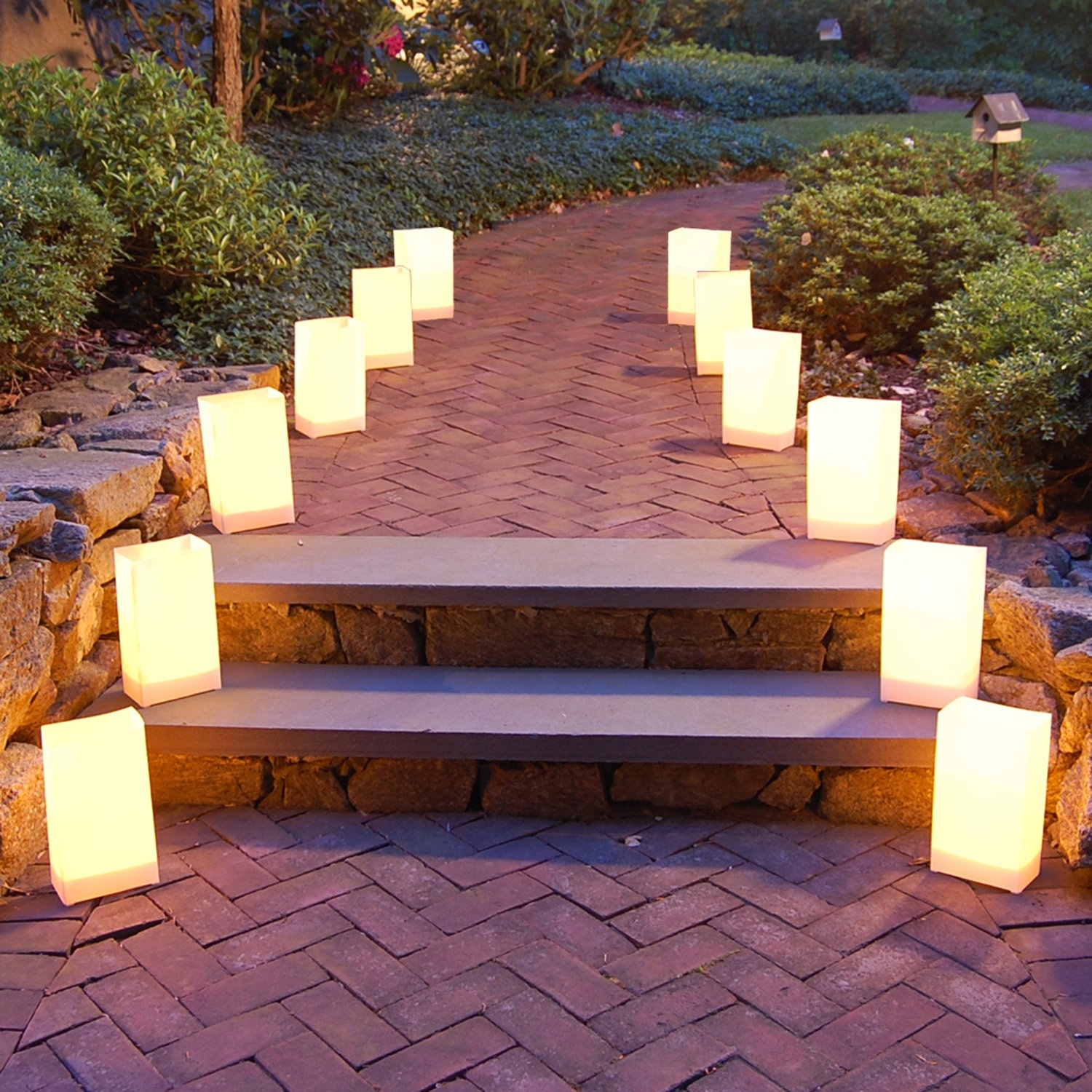 Luminarias | Wayfair Regarding Wayfair Landscape Lighting For Mini Garden (View 2 of 15)