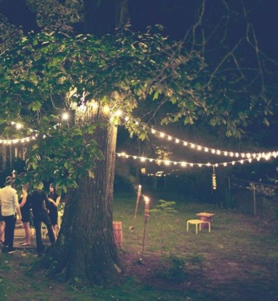 Outdoor Hanging Lights For Stylish Garden Ideas With Big Tree | Lestnic Pertaining To Hanging Outdoor Lights In Backyard (#13 of 15)