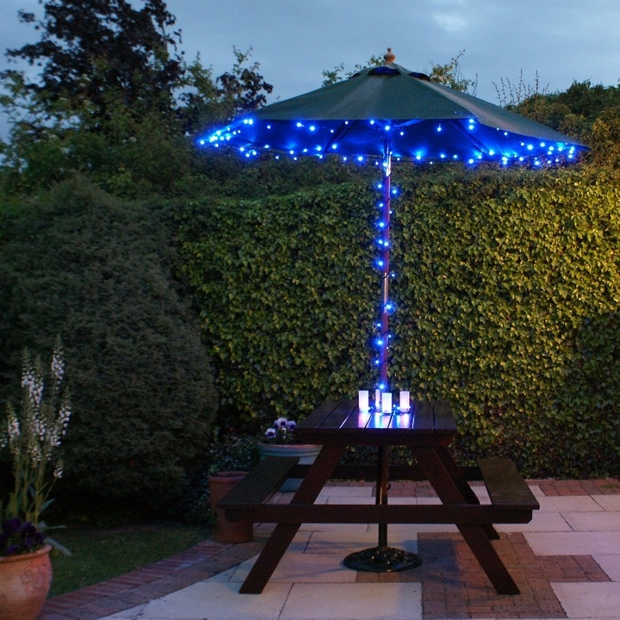 Solar Landscape Lighting Blue : Beautiful And Safety Solar Landscape In Solar Outdoor Lighting (View 14 of 15)