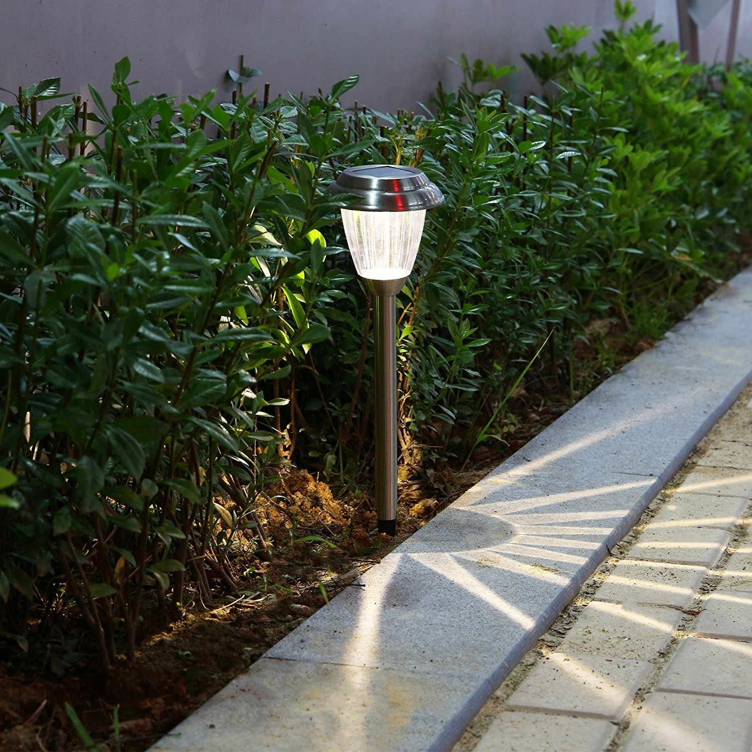 Solar Landscape Lighting Path : Beauty Of Solar Landscape Lighting In Contemporary Solar Driveway Lights At Target (#11 of 15)