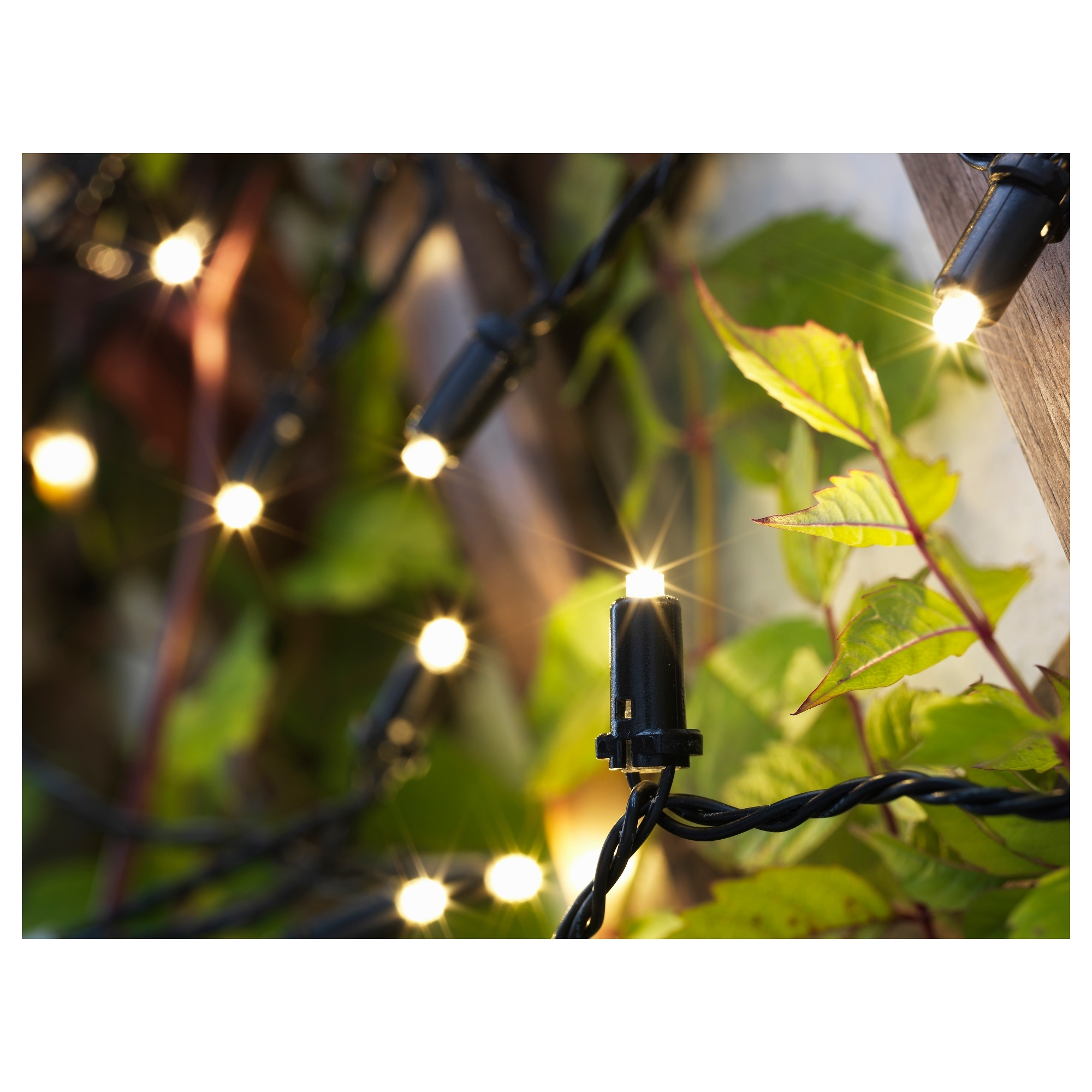 Solarvet Led String Light With 24 Lights – Ikea Intended For Ikea Battery Operated Outdoor Lights (#12 of 15)