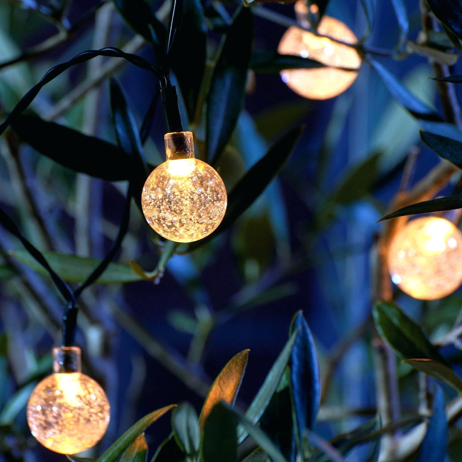 String Lights Backyard – Abhitricks Pertaining To Outdoor String Lights At Target (View 13 of 15)