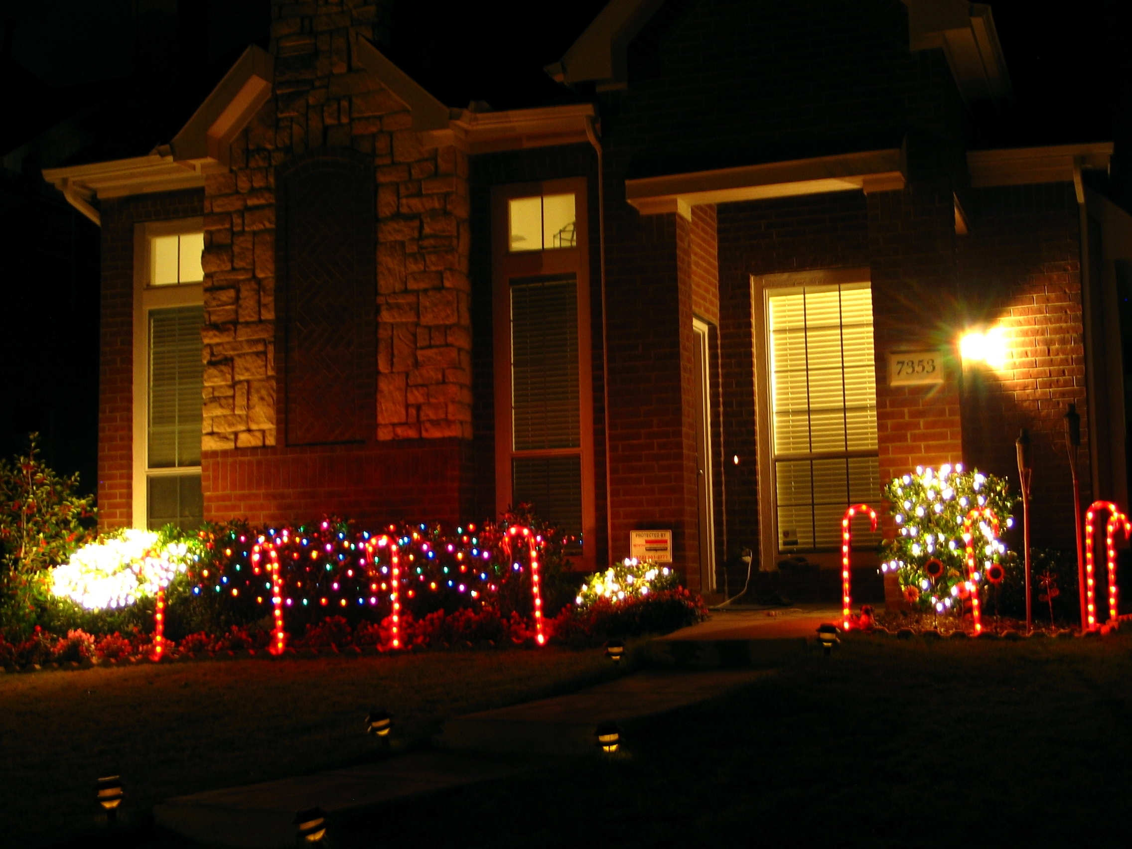 Tha House Decorating The Garden For Christmas | Tha House Regarding Outdoor Wall Xmas Lights (#13 of 15)