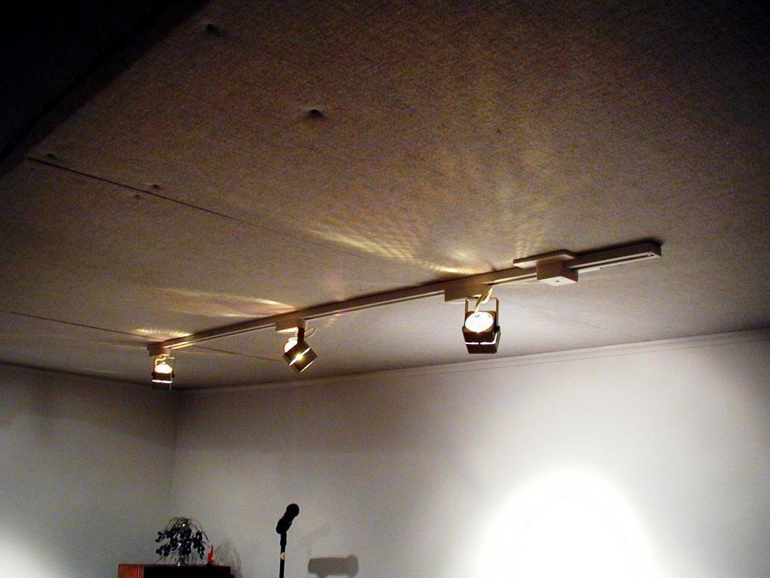Track Garage Ceiling Lights : Riothorseroyale Homes – Best Garage Intended For Outdoor Garage Ceiling Lights (#15 of 15)