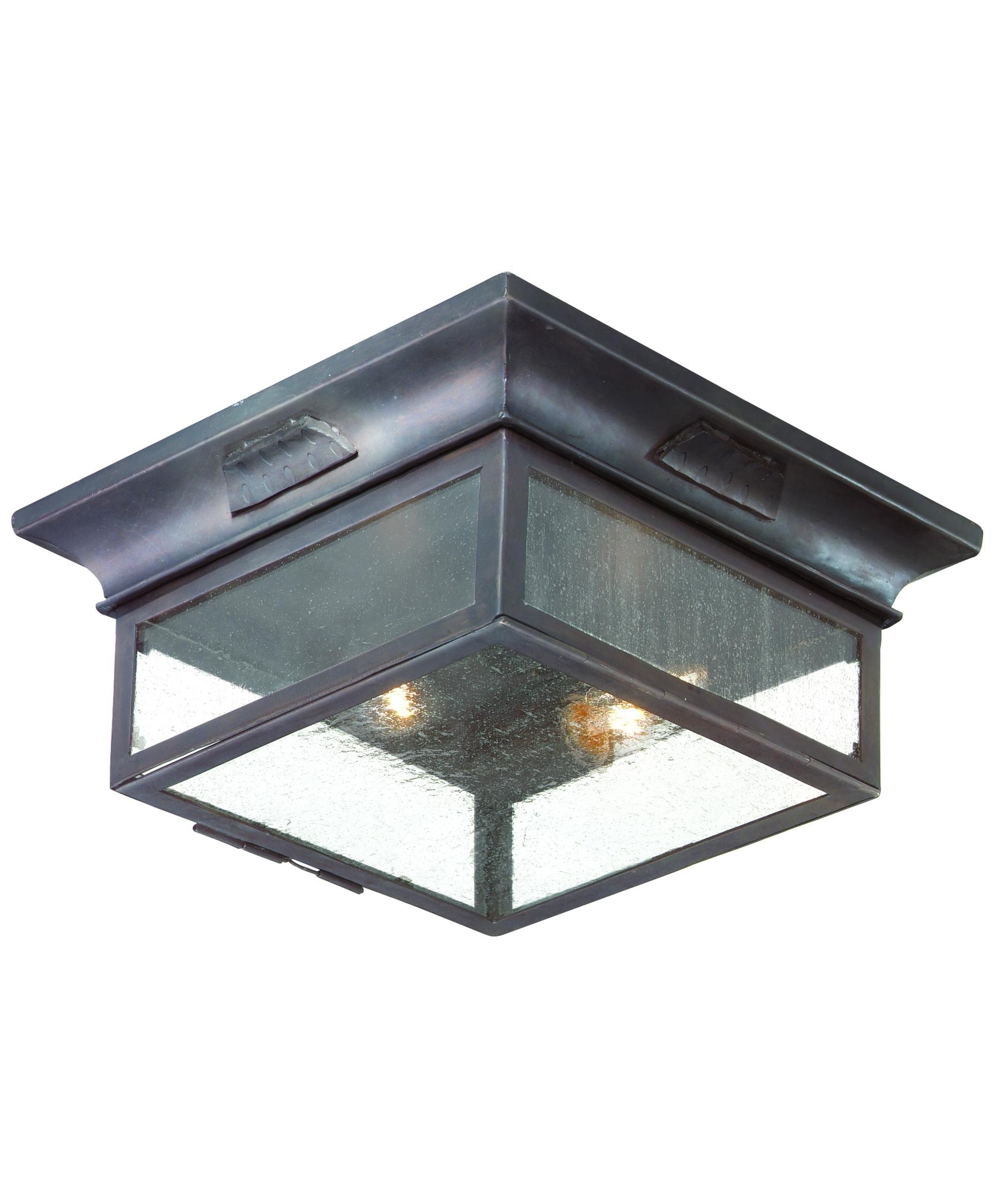 Troy Lighting C9000 Newton 13 Inch Wide 2 Light Outdoor Flush Mount With Regard To Outdoor Ceiling Flush Lights (#15 of 15)