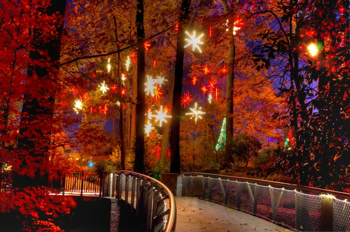 With A Southern Twist – Good Living In Today's South » Holiday In Botanical Garden Lights (View 15 of 15)