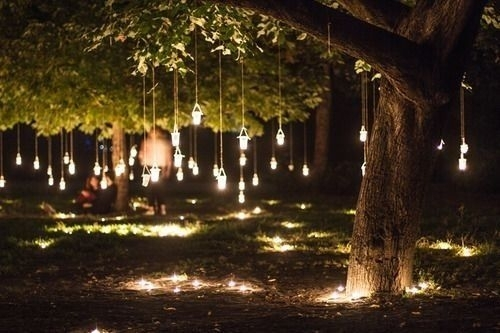Hanging Tree Lights | Home | Pinterest | Lights With Outdoor Lanterns For Trees (View 12 of 15)