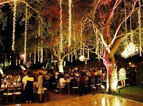 Inspiration about Likeable Outdoor Wedding Lights At 53 Best Lighting Images On With Regard To Outdoor Lanterns For Wedding (#6 of 15)
