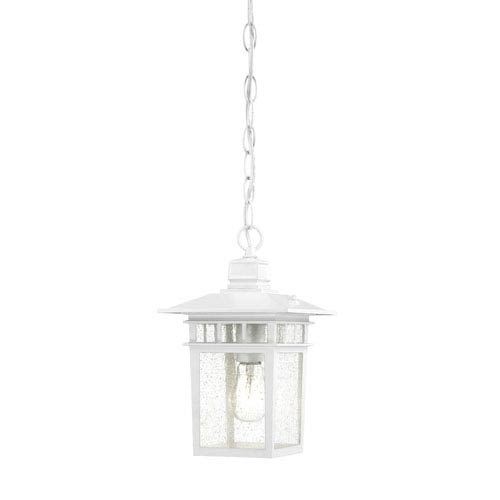 Nuvo Lighting Cove Neck White Finish One Light Outdoor Hanging With White Outdoor Lanterns (#5 of 15)