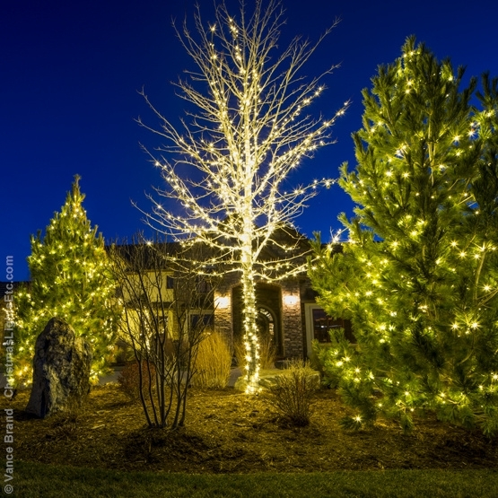 Outdoor Lights Tree – Outdoor Lighting Ideas With Outdoor Lanterns For Trees (View 14 of 15)