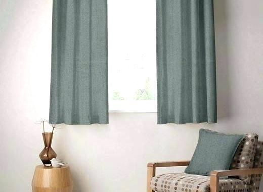 Exclusive Fabrics Heritage Plush Velvet Single Curtain Panel In Heritage Plush Velvet Curtains (View 17 of 50)