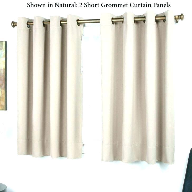 Exclusive Fabrics Heritage Plush Velvet Single Curtain Panel With Heritage Plush Velvet Single Curtain Panels (View 20 of 50)