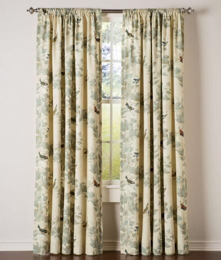 Popular Photo of Aviary Window Curtains