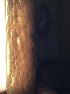 Chic Sheer Voile Vertical Ruffled Tier Window Curtain Panel Pertaining To Maize Vertical Ruffled Waterfall Valance And Curtain Tiers (View 13 of 30)