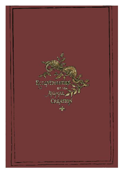 The Project Gutenberg Ebook Of Eccentricities Of The Animal In Flinders Forge 30 Inch Tiers In Dove Grey (View 24 of 30)