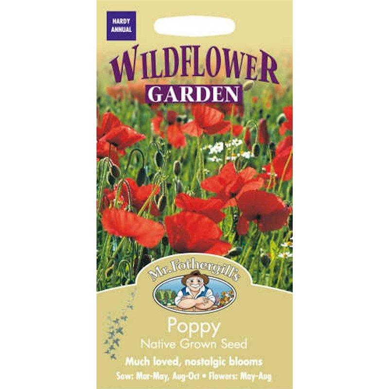 Poppy Seeds Within Wilde Poppies Ceramic Garden Stools (View 20 of 20)