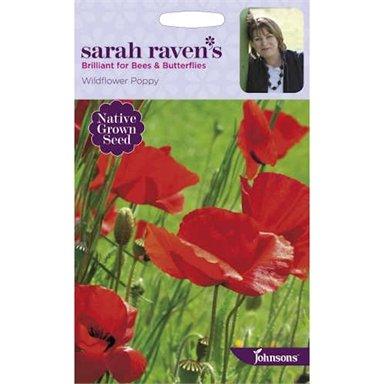 Sarah Ravens Wildflower Poppy Seeds Throughout Wilde Poppies Ceramic Garden Stools (View 14 of 20)
