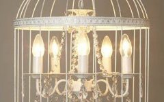 Birdcage Lights Fixtures