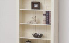 Painted Oak Bookcase