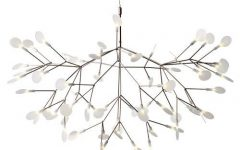 Moooi Pendant Lights