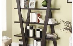 Contemporary Bookcases