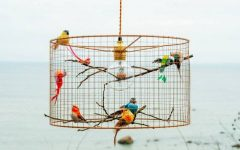 Bird Cage Pendant Lights