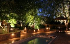 Modern Garden Landscape Lighting