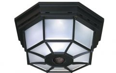 Outdoor Ceiling Mounted Security Lights