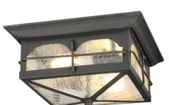Outdoor Ceiling Lights at Home Depot