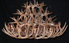 Stag Horn Chandelier