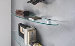 Glass Shelves for Living Room